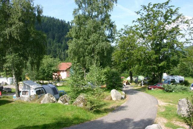 camping-domaine-du-haut-des-bluches-emplacement la-bresse-vosges hautdesbluches.com 3926